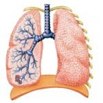 Kronična opstrukcijska bolest pluća