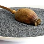 Ljekovita svojstva biljke Mak
