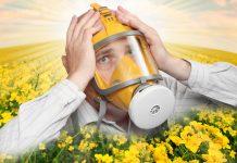 alergijski rinitis - alergija na pelud