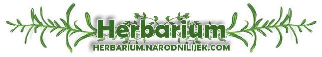Herbarium - Narodnilijek.com