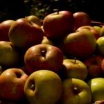 Pet vrsta voća i povrća koji imaju bolji okus u oktobru nego tijekom ostatka godine