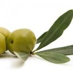 List masline podstiče proizvodnju inzulina