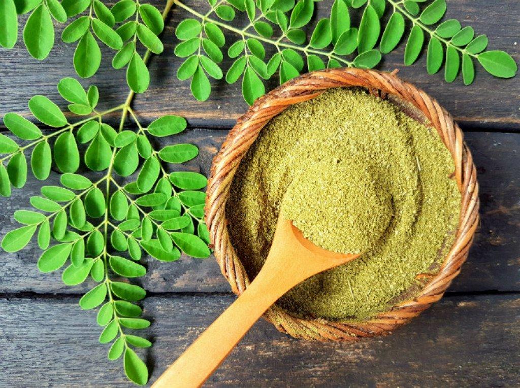 moringa-biljka-zdravlje