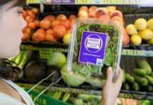 organski uzgojena hrana