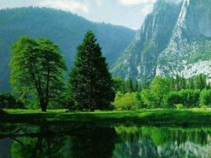 čista priroda