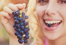 Plod vinove loze, grožđe