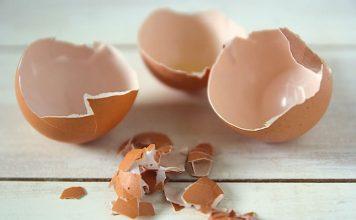 ljuska od jajeta