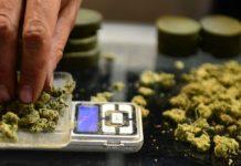 marihuana u medicinske svrhe