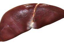 masna jetra prirodno liječenje