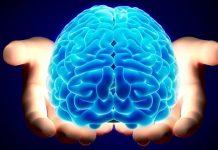 mozak, moždani udar, upala moždane ovojnice