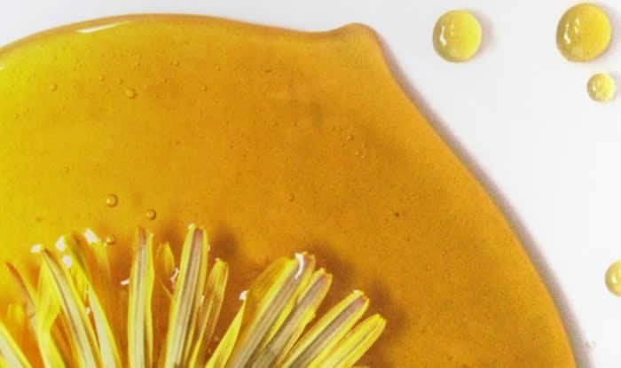 Sirup od cvjetova maslačka